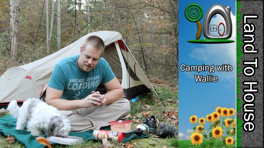 Camping with Wallie